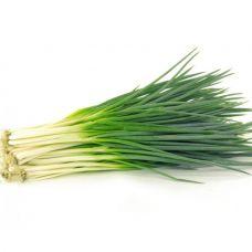 Лук зеленый